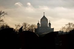 基督救世主大教堂在莫斯科 剪影 免版税库存图片