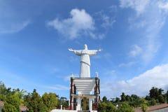 基督救世主雕象在巴布亚海岛 库存照片