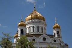 基督救主大教堂特写镜头圆屋顶 库存照片