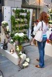 基辅花市场-第一朵城市花公平在基辅,乌克兰 2016年9月18日 库存图片