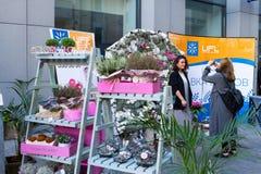 基辅花市场-第一朵城市花公平在基辅,乌克兰 2016年9月18日 免版税库存照片