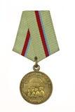 基辅防御的奖牌  免版税库存图片