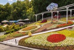 基辅,乌克兰花展示风景公园在基辅 构成  免版税图库摄影