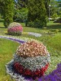 基辅,乌克兰花展示风景公园在基辅 构成Da 免版税库存图片