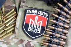 基辅,乌克兰- 2015年7月, 08日 乌克兰语雪佛志愿有词的军团 免版税库存图片