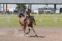 基辅,乌克兰- 2016年6月09日:基辅,乌克兰- 2016年6月09日:训练的马的女孩 库存图片