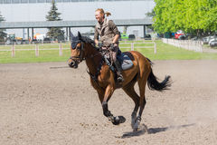 基辅,乌克兰- 2016年6月09日:训练的马的女孩 库存图片