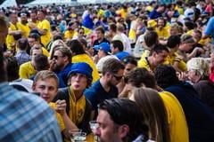 基辅,乌克兰- 6月10 :欢呼的瑞典和乌克兰爱好者有 免版税图库摄影