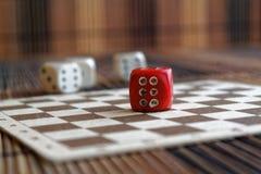 堆三白色塑料切成小方块和在棕色木板背景的一个红色模子 与黑小点的六个边立方体 第6 免版税库存图片