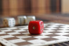 堆三白色塑料切成小方块和在棕色木板背景的一个红色模子 与黑小点的六个边立方体 第1 免版税库存图片