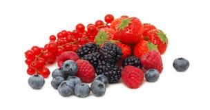 堆不同的庭院莓果(被隔绝) 免版税库存图片