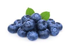 堆与在白色隔绝的绿色叶子的蓝莓 免版税库存图片