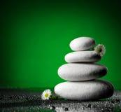 堆与春黄菊的l石头 免版税图库摄影