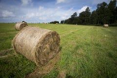 堆与绿草的干草 免版税库存图片