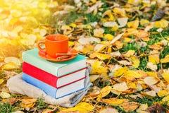 堆书和一个杯子在老木桌上的热的咖啡在日落的森林里 回到学校 登记概念教育查出的老 库存照片