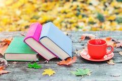 堆书和一个杯子在老木桌上的热的咖啡在日落的森林里 回到学校 登记概念教育查出的老 免版税库存照片