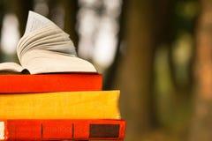 堆书和开放精装书在被弄脏的自然风景背景预定 复制空间,到学校 教育背景 免版税库存照片