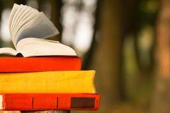 堆书和开放精装书在被弄脏的自然风景背景预定 复制空间,到学校 教育背景 免版税库存图片