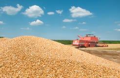 堆五谷麦子 库存图片