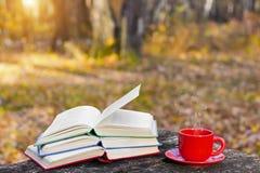 堆五颜六色的书和一个杯子在老木桌上的热的咖啡在回到学校的森林里 登记概念教育查出的老 库存照片