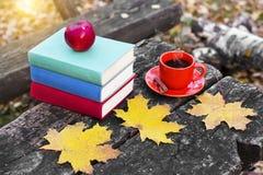 堆五颜六色的书和一个杯子在老木桌上的热的咖啡在回到学校的森林里 库存图片