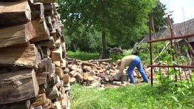 堆切好的木和被弄脏的农夫人在围场准备木柴 4K 影视素材