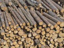 堆切好的木日志,未加工的木材,自然本底 免版税图库摄影