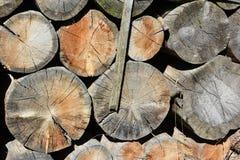堆切好的木柴 图库摄影