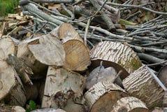 堆加热的重的木日志 免版税库存照片