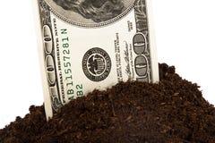 堆土壤和美金 免版税库存图片
