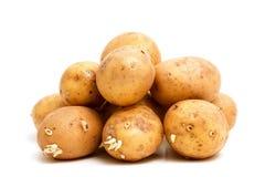 堆土豆 图库摄影