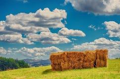 堆在一个农村风景的干草捆 库存图片
