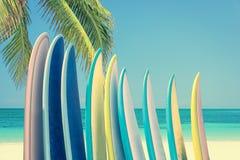 堆在一个热带海滩的五颜六色的冲浪板由有棕榈树的,减速火箭的葡萄酒过滤器海洋 免版税库存图片