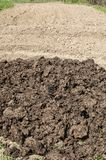 堆在农村农业领域的新鲜的肥料 免版税库存图片