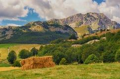 堆在农村风景的干草捆 山地区,杜米托尔国家公园,黑山 免版税库存图片