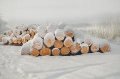 堆在冬天雪下的被切开的木日志 图库摄影