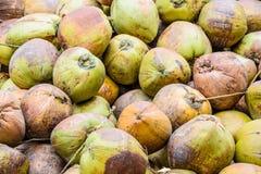 堆在地面,泰国上的老椰子 库存照片