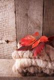 堆在木桌和红色叶子,舒适和软的温暖的秋天秋天背景上的棕色舒适被编织的毛线衣,垂直 库存图片