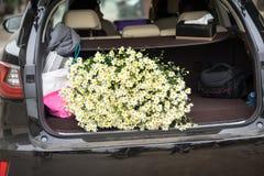 堆在汽车的雏菊花 象观光的一些人民在花田和购买雏菊在家在河内,越南 免版税库存照片