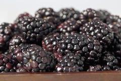 堆在碗的黑莓 免版税库存图片