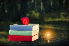 堆在老木桌、苹果计算机和一个发光的电灯泡上的五颜六色的书在黑暗的森林里 免版税库存图片