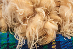堆在花呢布料的新鲜的绵羊羊毛 免版税库存照片