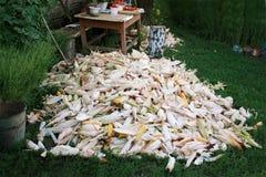 堆在草的玉米 库存照片