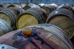 堆在葡萄园的葡萄酒桶 免版税库存图片