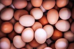 堆在超级市场的美丽的新鲜的鸡蛋在日本 免版税库存图片