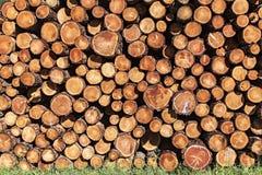 堆在锯木厂的木材 免版税图库摄影