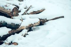 堆在雪下的木日志 库存照片