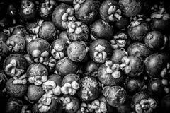 堆在黑白照片的山竹果树 免版税图库摄影