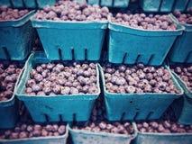 堆季节性新鲜的地方蓝莓,待售在生产市场上,加拿大 免版税库存照片