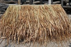 堆小屋屋顶的香根草 香根草盘区小屋屋顶的,秸杆屋顶小屋盘区 免版税库存图片